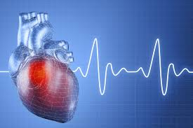 heart monitor - How Oral Health Affects Overall Health: the Heart of the Matter (part 3)